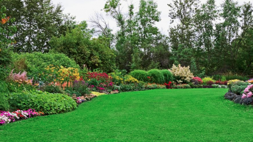 the best landscaping tip hire a professional landscaping service